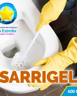 SARRIGEL (ENVASADO 600 ML)