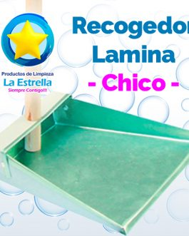 RECOGEDOR LAMINA CHICO***
