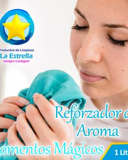 REFORZADOR DE AROMA C/PLANCHA FACIL MOMENTOS MAGICOS (ENVASADO 1 L.)