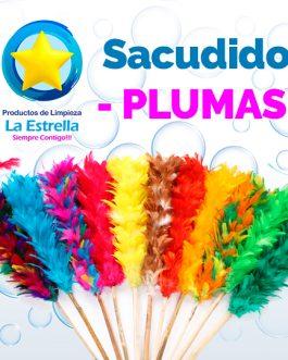 SACUDIDOR DE PLUMAS***
